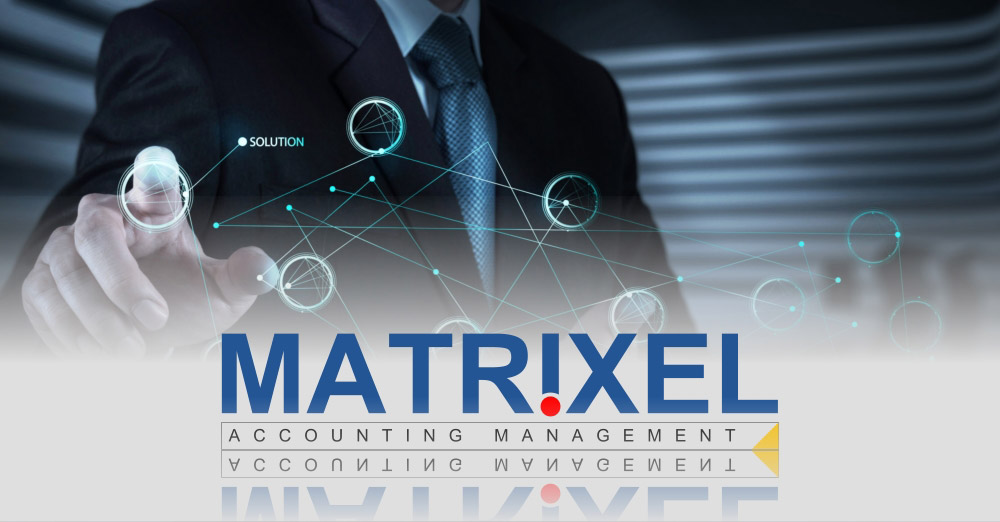 Matrixel Accounting Management